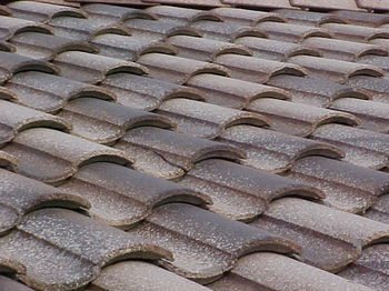 Broken roof tiles can cause water infiltration and damage to the felt underlayment, and will eventually lead to leaks.